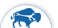 Buffalo Neuropsychology logo